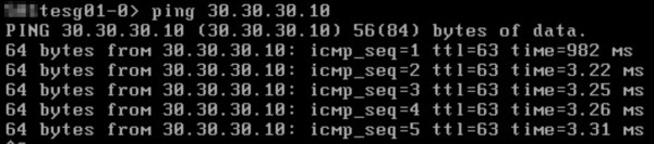 Ping Test from the Tenant ESG to a VM behind a UDLR